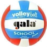 Gala SCHOOL FOAM COLOUR Мяч волейбольный