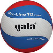 Gala PRO-LINE 10 Мяч волейбольный